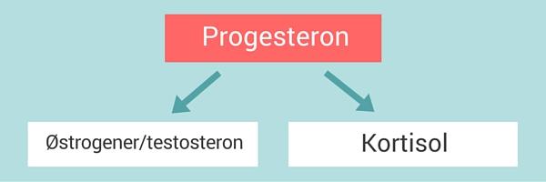 hormoner i overgangsalderen